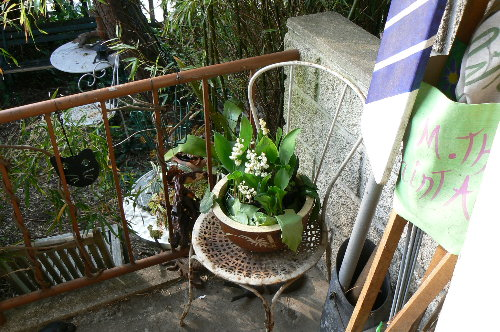 http://www.archive-host2.com/membres/images/1336321151/nawak/jardin/mai1.jpg
