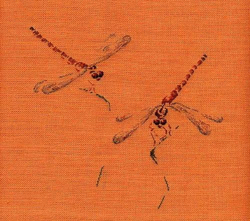 http://www.archive-host2.com/membres/images/1336321151/paj/libellules/libellule_Anatole_France.jpg