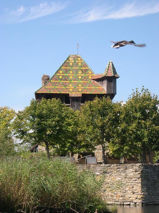 Ecomusée d'Alsace - Canard en plein vol