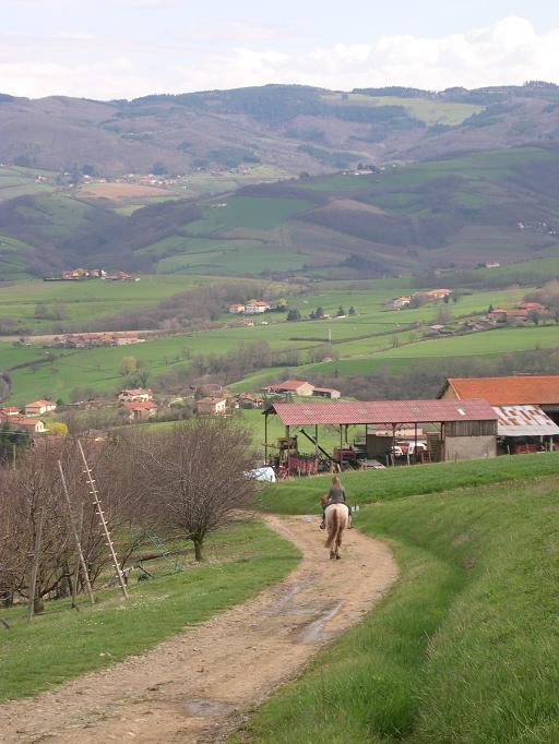 Une cavalière près de Savigny