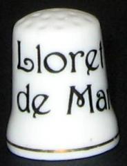 http://www.archive-host2.com/membres/images/miniatures/462583700/des/m1_IMG_8838.JPG